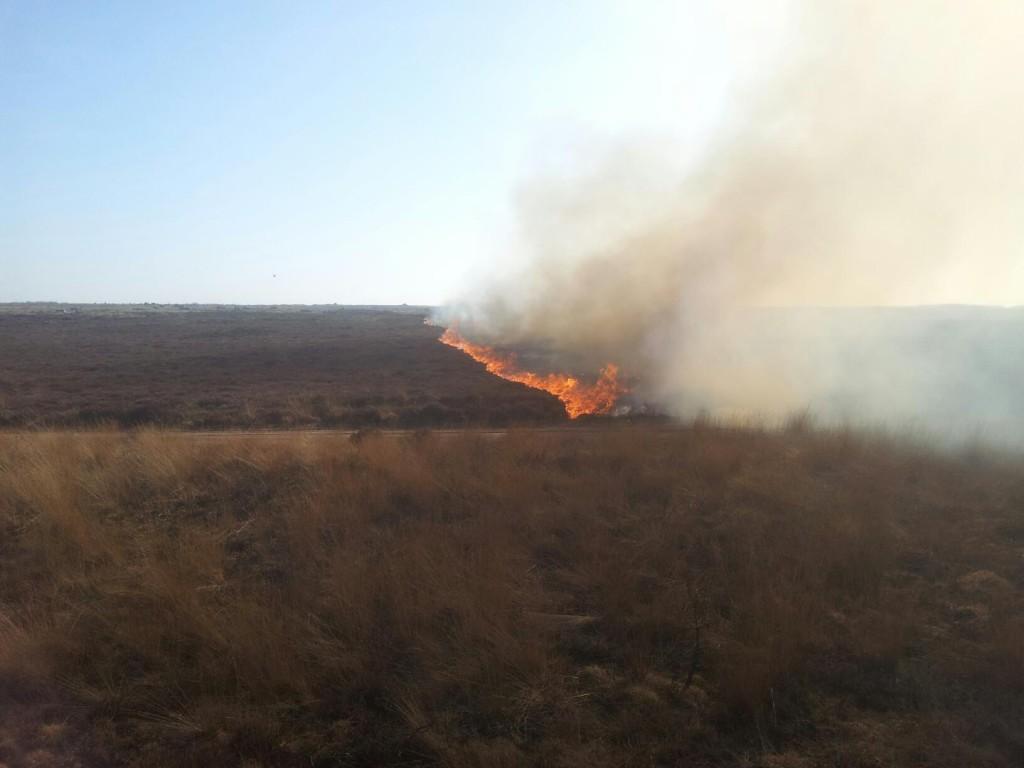 verbranden heide
