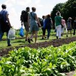 gezondste_fair_van_nederland